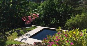 Eco Chalet avec piscine naturelle à Grenoble